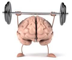 Brain bodybuilder
